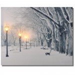 Obraz LED WINTER 40 x 30